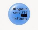 blog influent, histoire des blogs